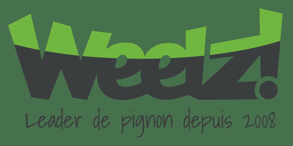 Logo Magazine vélo Weelz pour notre article vélo électrique